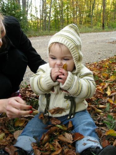 Anastasija Zivkovic1 Biramo naj fotku meseca novembra!