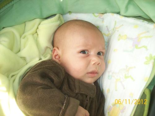 Jovan Djurovic1 Biramo naj fotku meseca novembra!
