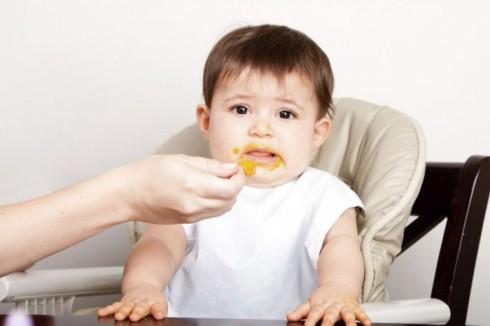 ishrana 490x326 So i šećer u ishrani bebe